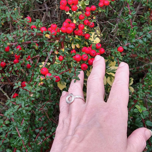 Silver Modern-Rose-ring-with-double-shank - worn on ring finger for scale - against green foliage and red berries